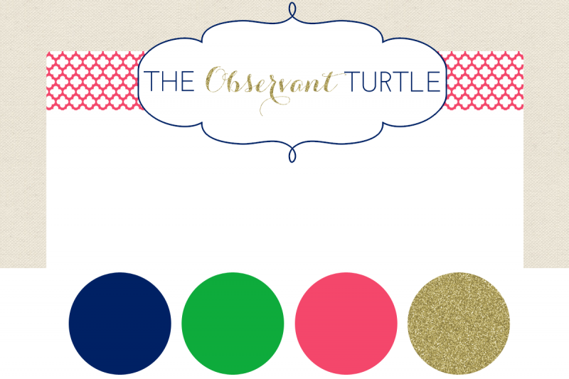 The Observant Turtle 2